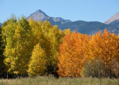 custer_county_fall_b-9398