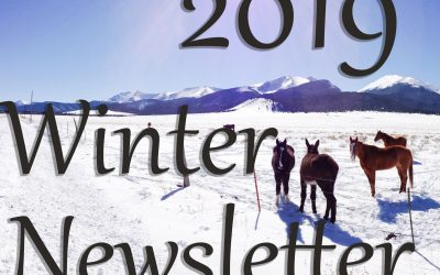 2019 Winter Newsletter